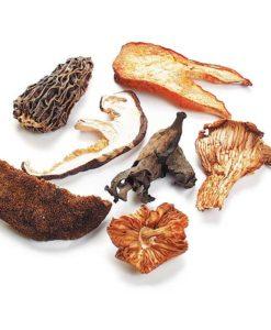 Mushrooms, Dried